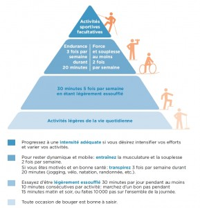 Pyramide de l'AP